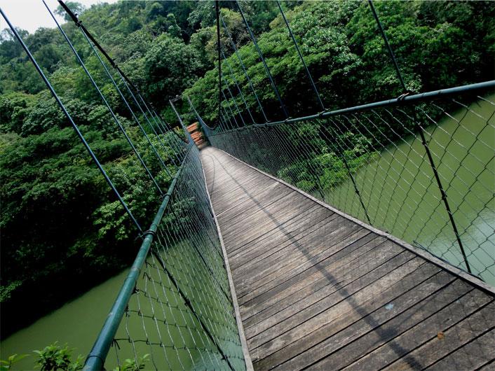 ecotourism-main-page