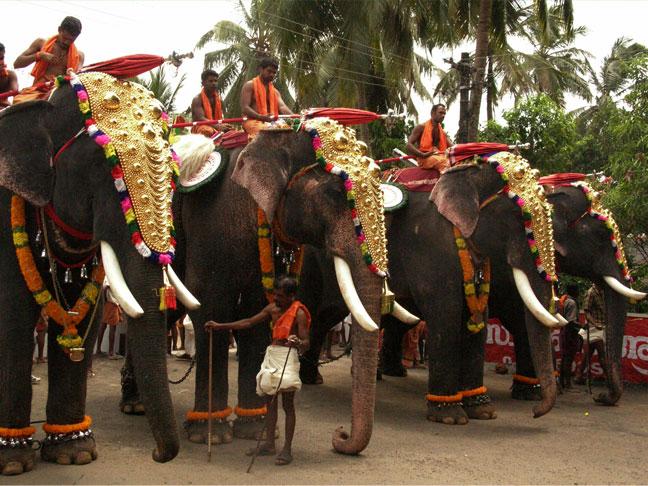 temple-festivals
