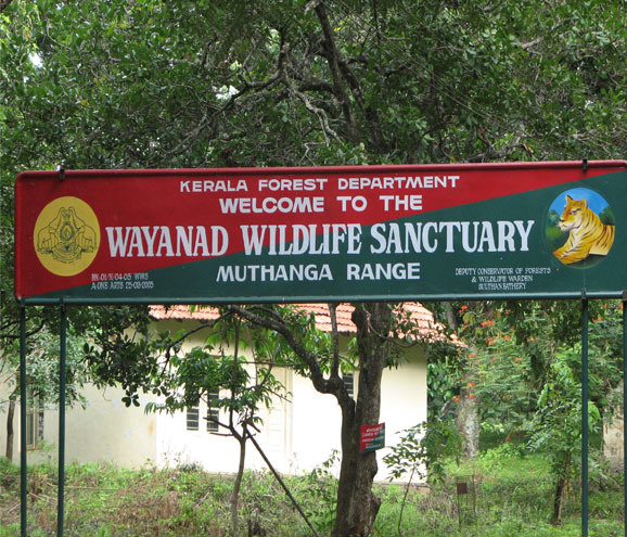 wayanad-wildlife-sanctuary