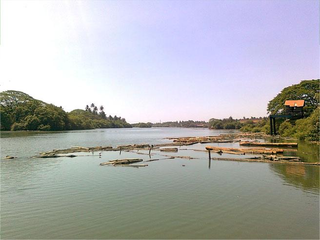 kallayi-river