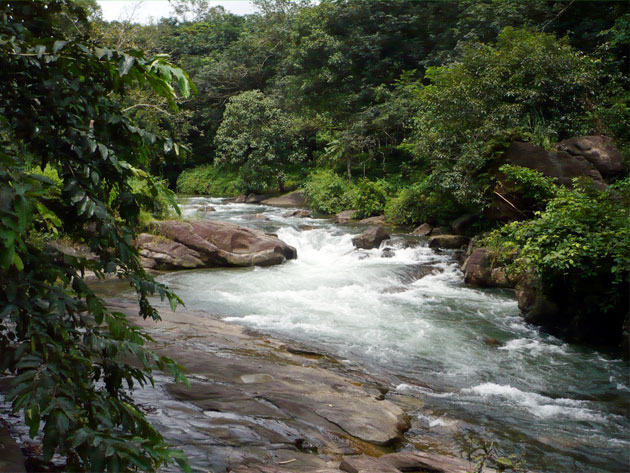 meenachil-river