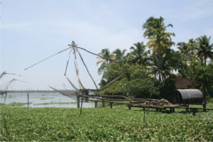 kumbalangi-backwaters