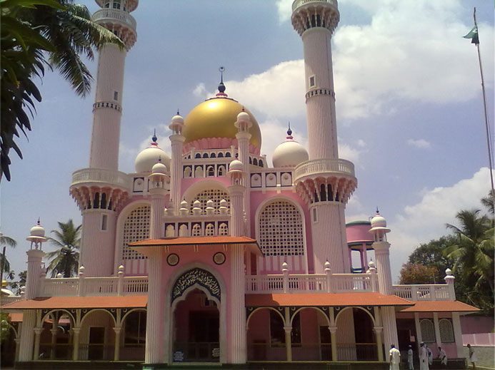other-mosques2